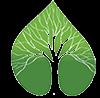 Weber's Baum- und Gartenpflege